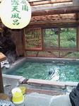 20090825朝の露天風呂.jpg