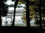 20091019橋.jpg
